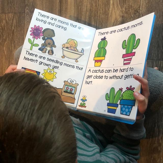 trauma sensitive mothers day book