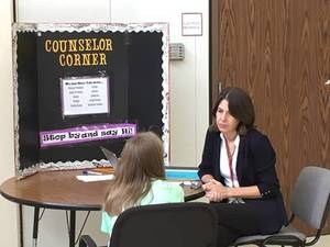 Introducing the role of the school counselor